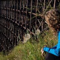 Pouce trestle 2013 (271 of 350)-scr.jpg